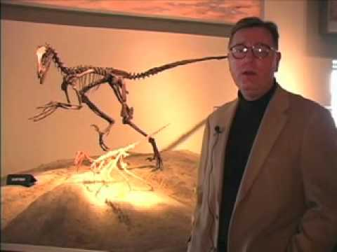 World Book Explains: Could dinosaurs live today?