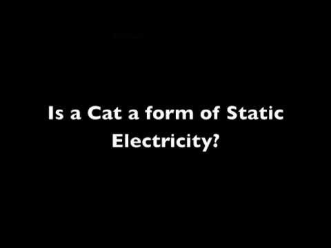 Is a Cat a Form of Static Electricity?