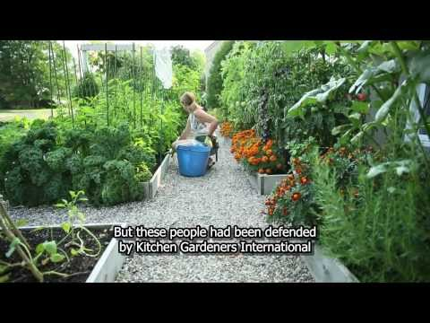 Drummondville's front yard vegetable garden