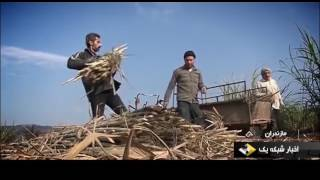 Iran Brown Sugar products, Bahnemir Babolsar county محصولات شكر قهوه اي بهنمير بابلسر ايران