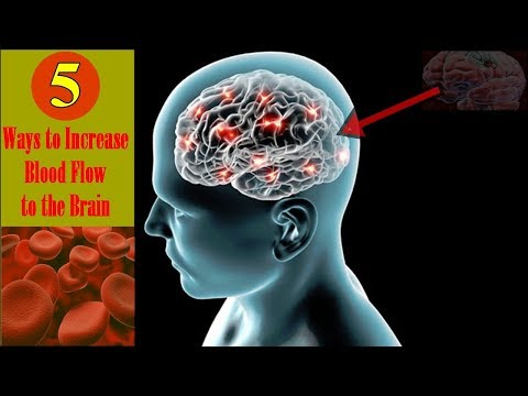5 Ways to Increase Blood Flow to the Brain