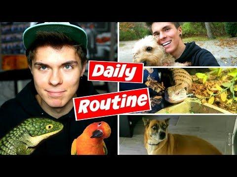 Daily Pet Care Routine! (Reptiles, Birds, + More!)