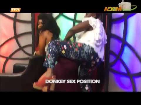 Xxx Mp4 DONKEY SEX POSITION 3gp Sex