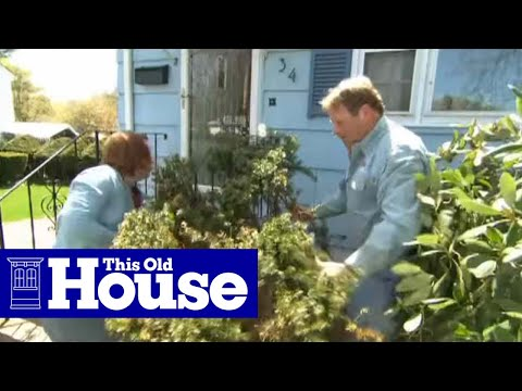 How to Remove and Replace Foundation Plantings - This Old House