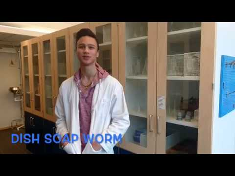 Dish soap worm chemistry experiment