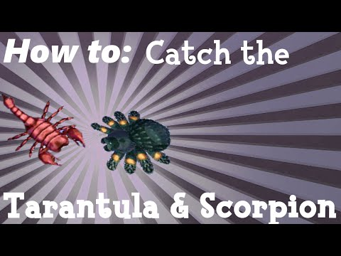 How To: Catch the Tarantula & Scorpion (ACNL)