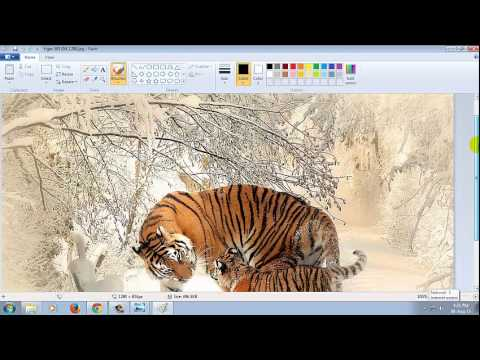 Reduce Picture Size (Kilo Bytes) With Paint