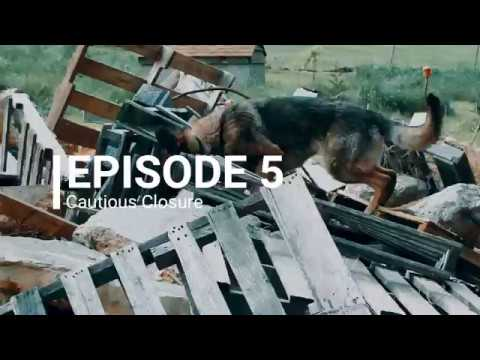 A Life of Dogs Podcast - Episode 5 Trailer
