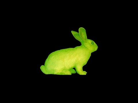 The Ethical Dilemma of Glowing Bunnies