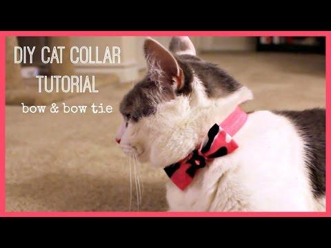 DIY Cat Collar Tutorial | Bow & Bow Tie
