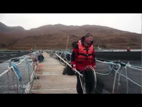 Scotland. The land of food and drink: Chapter 2 - Geoff Kid, Salmon Farmer