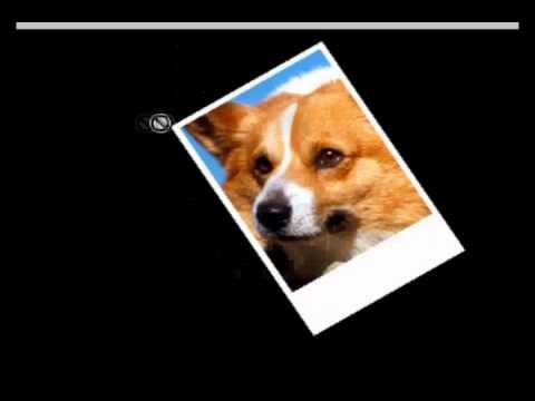 photo collage tutorial using Adobe Photoshop CS3