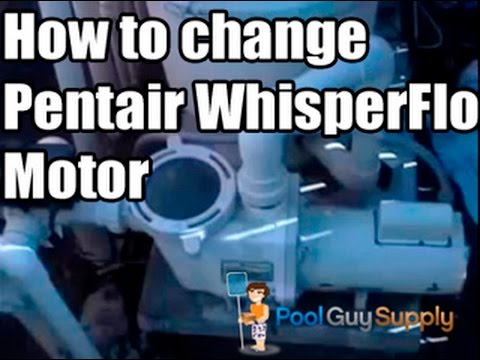 Pool Motor Replacement - Pentair Whisperflo