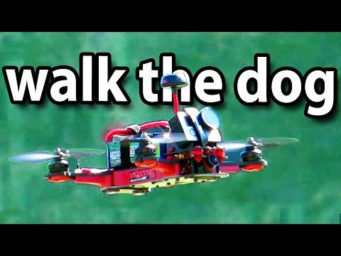 Formation flights with gliders, walk the dog with RC plane