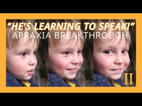 Cameron Learns to Speak! | Gemiini Testimonial - Children With Autism Learning To Speak