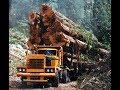 Best Logging Truck Drivers Skills Heavy Machines Big Trucks
