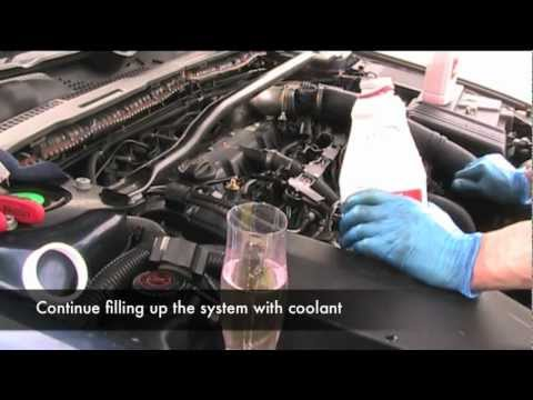 Coolant and Thermostat Change