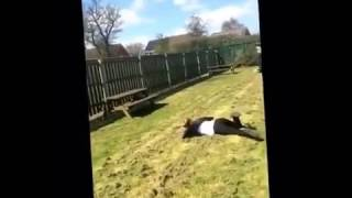 Two girls fail video |  ★ 7 second FUNNY Video 😂