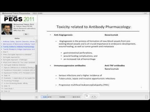 Antibody Safety in Development of Monoclonal Antibodies
