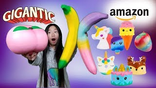 Download BIGGEST SQUISHY PACKAGE EVER FROM AMAZON SQUISHIES BY WANTINC Video