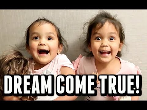 MAKING THEIR DREAM COME TRUE! -  ItsJudysLife Vlogs