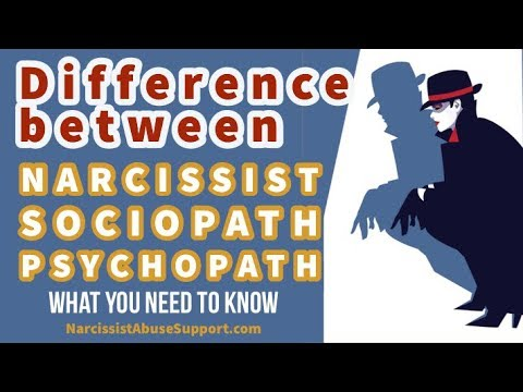 How to identify a narcissist vs sociopath - Interview with Mary Ann Glynn