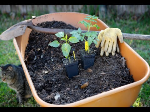 How to Make Vegetable Compost for the Garden