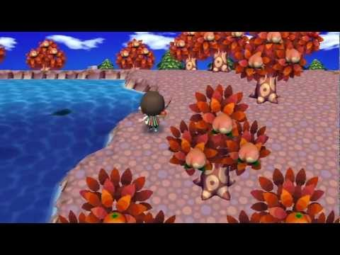 Animal Crossing City Folk - The Golden Fishing Rod (HD)
