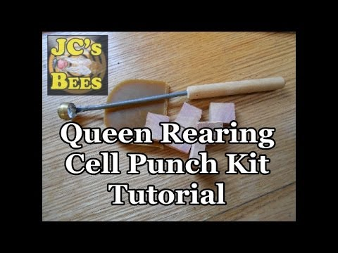Queen Rearing Cell Punch Kit (Tutorial)
