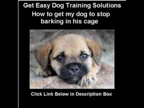 How to get my dog to stop barking in her[his] cage