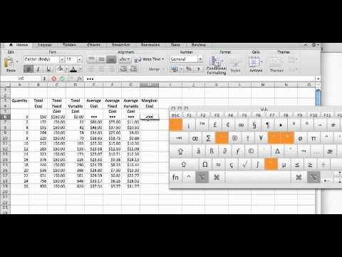 Cost Calculations Using an Excel Spreadsheet.mp4
