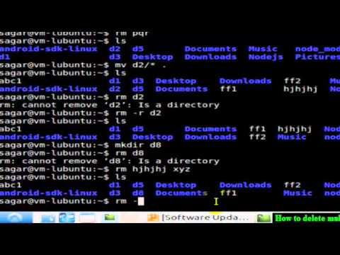 How to delete multiple files and directories in Unix
