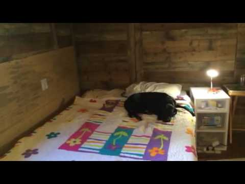 DIY Tiny House: Converting a Storage Shed into a Tiny Home: Neat and cheap idea for the ceiling!