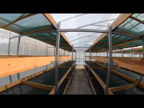 Coffee Solar - Café Capucas Barista & Farmer 2015