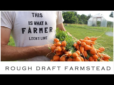 Why RIGHT NOW is the Best Time To Become a Small Farmer