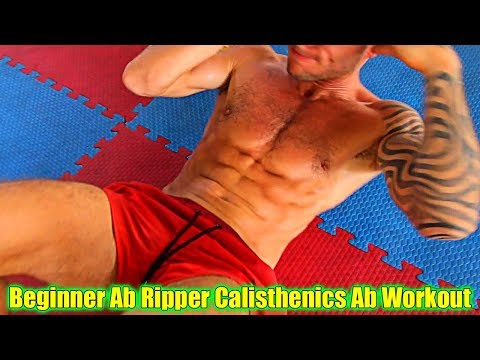 Beginner Calisthenics Ab Ripper Workout - NO EQUIPMENT NEEDED