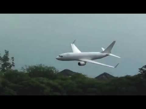 Boeing B737-800 homemade RC plane (pusher prop)