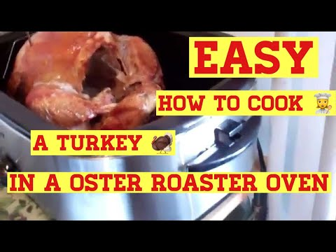 Oster 24- Pound Turkey Roaster Oven Review Turkey Cooking