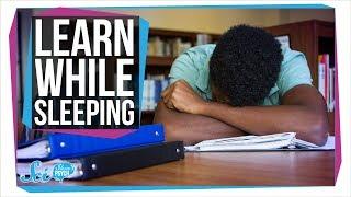 How to Learn While You Sleep