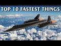 Top 10 Fastest Things In The World Vlog#18 by HooplakidzLab
