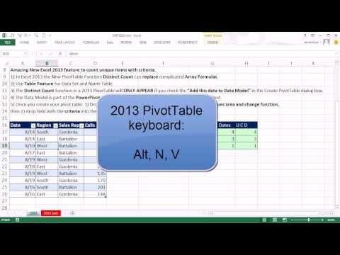 Excel Magic Trick 1053: Unique Count With Criteria: Excel 2013 PivotTable Distinct Count Function