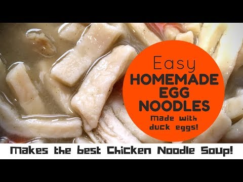 HOW TO MAKE Homemade Duck Egg Noodles for the BEST Chicken noodle soup! YUMMY comfort food!