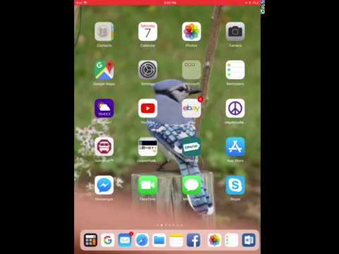 iOS 11.02 Keyboard Numbers & Symbols iPhone and iPad