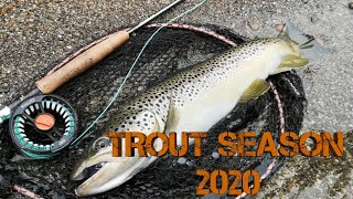Trout season 2020 preview|Trout fly fishing|Fly fishing Croatia