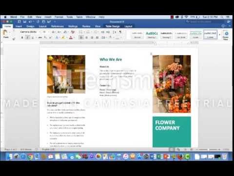 How to Create a Tri-Fold Brochure Using Microsoft Word Templates