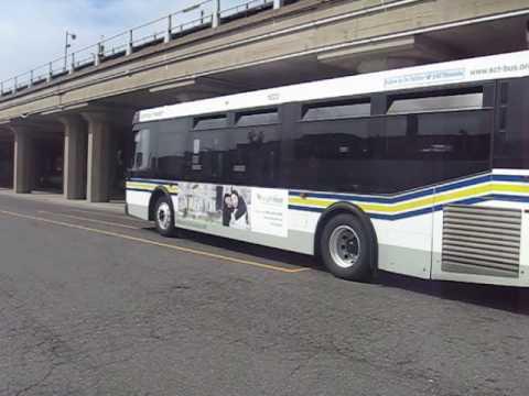 S40 bus at Babylon station