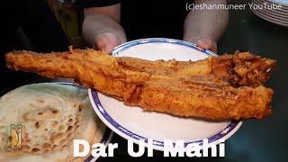 Dar Ul Mahi Fried Fish, Muzang Chungi Street Food of Lahore