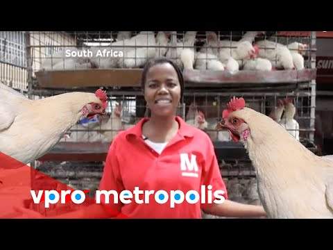 Selling chicken feet in South Africa - vpro Metropolis