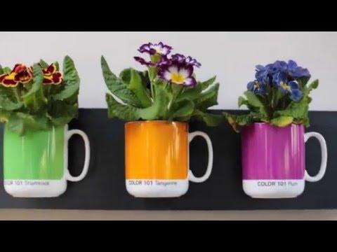 DIY planter ideas - Awesome & easy!