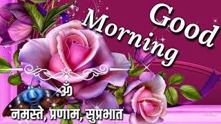 Good morning video beautiful lovely whatsapp video greetings massage good morning video beautiful whatsapp status greetings wishes hindi quotes massage shayari m4hsunfo